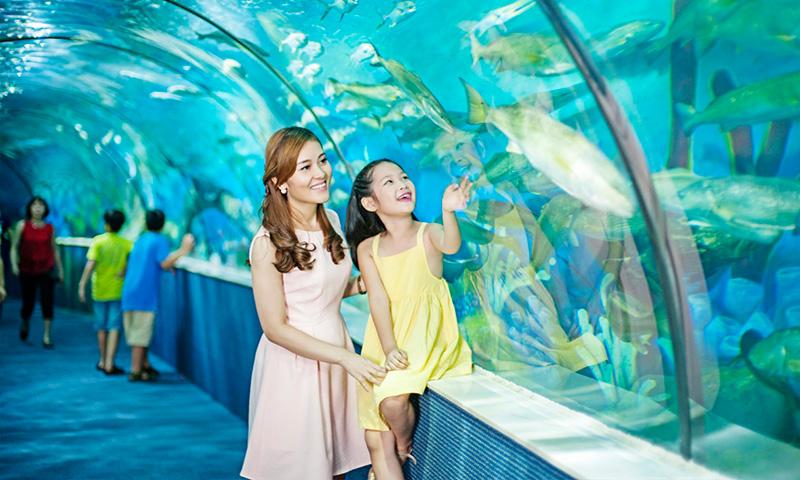 Du lịch VinOasis Phú Quốc thủy cung Vinwonders